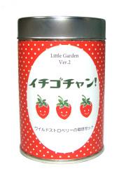 リトルガーデン2 イチゴチャン